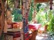 amon_luxor_hotel_garden