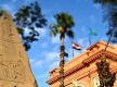 Cairo Day Tour Egyptian Museum